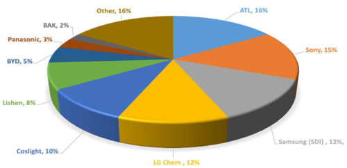 Market Share for Leading Lithium Polymer Manufacturers